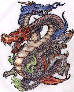 Premier Dragon